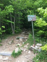 The western trailhead in the Peabody Slopes parking lot along route 18.
