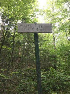 After descending the summit of Bald Mountain, I continued on the trail to Artists Bluff.